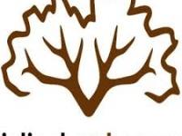Jelínek Cork Group - korkové podlahy